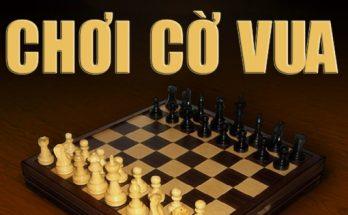 Chơi game cờ vua trò chơi tí tuệ mà bạn nên chơi mỗi ngày